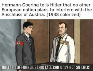 History, Hitler, and Austria: Hermann Goering tells Hitler that no other  European nation plans to interfere with the  Anschluss of Austria. (1938 colorized)  HALT! MEIN FURHER SCHNITZEL CAN ONLY GET SO ERECT. Fuhrer Schnitzel.