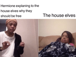 Hermione, Reddit, and Free: Hermione explaning to the  house elves why they  The house elves  should be free  MB Goddamn it Hermione