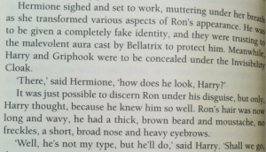 Beard, Fake, and Fire: Hermione sighed and set to work, muttering under her br  as she transformed various aspects of Ron's appearance. He was  to be given a completely fake identity, and they were trusting to  the malevolent aura cast by Bellatrix to protect him. Meanwhile.  Harry and Griphook were to be concealed under the Invi  Cloak  There,' said Hermione, 'how does he look, Harry?'  It was just possible to discern Ron under his disguise, but only,  Harry thought, because he knew him so well. Ron's hair was  long and wavy, he had a thick, brown beard and moustache, no  freckles, a short, broad nose and heavy eyebrows.  now  Well, he's not my type, but he'll do,' said Harry. Shall we go, the-cu-cumberpatch:So I read somewhere on Tumblr a theory that Harry is bisexual so i thought I'd add some fuel to that fire