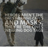 Dogs, Memes, and Mask: HEROES AREN'T THE  ONES WEARING CAPES  AND MASKS,  THEY'RE THE ONES  WEARING DOG TAGS Thank you!