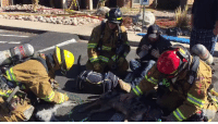 "Memes, Colorado, and Heroes: HEROES!!! ""Colorado Springs firefighters working to save a dog and two cats following an apartment fire today. **They made it** thanks to their heroic efforts! Thank you firefighters!"" Saving a life is priceless!!!! #HEROES"
