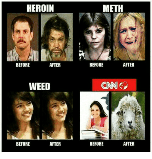 Meth Mouth Awareness - Don't End Up Like Samantha Bee : The_Donald: HEROIN  METH  BEFORE  BEFORE  AFTER  AFTER  CNN  WEED  BEFORE  AFTER  BEFORE  AFTER Meth Mouth Awareness - Don't End Up Like Samantha Bee : The_Donald