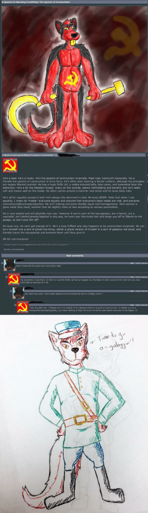The Specter of Communism (xposted on r/yiffinhell): He's a bear. He's a husky. He's the spectre of communism incarnate. Meet Ivan Ivanovich Ivanovsky. He is  literally the spectre of communism in furry form. He's often seen wearing a Soviet uniform, although his principles  are largely Marxist-Leninist. He has a huge fluffy tail, a vodka-induced belly, bear paws, and somewhat bear-like  behaviors. He's a lot like Hetalia's Russia. Scary on the outside, seems intimidating and baneful, but he's really  soft and means well on the inside. He often carries around a hammer and sickle and he loves belly rubs.  He's all for equality except in bed--he's always the dominant in bed. He loves BDSM. Note that when I say  equality, I mean he *treats everyone equally and ensures that everyone's basic needs are met, and prevents  overconsumption/overproduction. He isn't making everyone literally equal and homogeneous. Each person is  given what they need, whether that be slightly more or less according to various parameters.  He is very playful and will playfully nom you. However if you're part of the bourgeoisie, are a fascist, are a  capitalist, are hateful/greedy/bigoted in any way, he turns you into kulak bait and drags you off to Siberia to the  gulags, so don't piss him off!  He loves sex. He can't get enough of it. He's a sexy fuffball who also happens to be communism incarnate. He can  turn himself into a sort of ghost-like thing--either a ghost version of himself or a sort of gaseous red cloud, and  literally haunt the bourgeoisie and torment them until they give in.  All teh communisms!  All teh communisms!  User comments  And it looks like he could use some belly rubs  He absolutely laves them x3 And he laves his fluffy tail being hugged, but he hates it when people think that he's any less  But look how cute  How could anyone be intimidabed by such a chubby cutie?  They shouldn't be :3 People are only scared of him because they're scared af communism x3 Unless you're a 