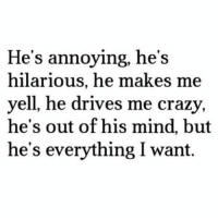 Crazy, Tumblr, and Best: He's annoying, he's  hilarious, he makes me  yell, he drives me crazy,  he's out of his mind, but  he's everything I want. silly-luv:  ♡ find your best posts on my blog ♡