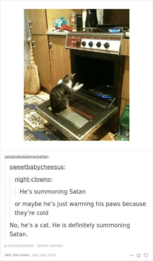 Caturday, Definitely, and Cold: He's summoning Satan  or maybe he's just warming his paws because  they're cold  No, he's a cat. He is definitely summoning  Satan.  a unimpressedcats Source caturday  365,760 notes Aug 14th, 2017 Cat by an open oven