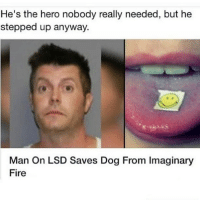 Who's man's is this 😂😂😂😂😂: He's the hero nobody really needed, but he  stepped up anyway.  Man On LSD Saves Dog From Imaginary  Fire Who's man's is this 😂😂😂😂😂