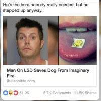 • • { tumblr tumblrpost tumblrtextpost funny tumblrfunny funnytumblr comedy weird memes relatable af fandoms instagood follow cute love bill_wi_the: He's the hero nobody really needed, but he  stepped up anyway.  Man on LSD Saves Dog From lmaginary  Fire  theladbible.com  oeo 51.9K  6.7K Comments 11.5K Shares • • { tumblr tumblrpost tumblrtextpost funny tumblrfunny funnytumblr comedy weird memes relatable af fandoms instagood follow cute love bill_wi_the