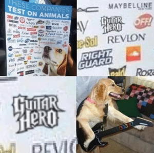 Animals, Avon, and Reddit: HESE COMPANIES  TEST ON ANIMALS  MAYBELLINE  3M 409 ge  URINA  BOSS HI ic  BANDAID te  HuITAR OFF!  HERO  e-Sal  REVLON  RIGHT  GUARD  Veaird  ACUVUE Aveeno  AIR  ALMAY us  WICK AXE AVON  Coppertons  DRy  Chap Stick COVERGR  Douny Dave grD&G Crest IESEL  AMA AD n  all-lk  NIGR green  hed  fbr Diai Galleth  uSTERIE L'OREALyelnehmn unt  WAYSDLLINE CS  HIVEA  OLAY  REVLON  PANTENE  RIGHT  GUARD  Rampacs  P&G  Rasaine  SGeret St lves REDKEN  TRES  Rum &L  ROga  GUTAR  HeRO  O  O0000  OEVI how can I say, he got a talent