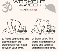 Funny, Head, and Turtle: HEVEEK  turtle pose  schmedium.org  1. Place your knees and  elbows flat on the  ground with your head  between your arms  2. Don't peek. The  world is a dangerous  place and you're a  vulnerable little turtle