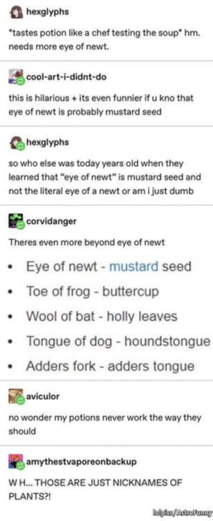 """: hexglyphs  tastes potion like a chef testing the soup  hm.  needs more eye of newt  cool-art-i-didnt-do  this is hilarious +its even funnier if u kno that  eye of newt is probably mustard seed  hexglyphs  so who else was today years old when they  learned that """"eye of newt"""" is mustard seed and  not the literal eye of a newt or am i just dumb  corvidanger  Theres even more beyond eye of newt  Eye of newt - mustard seed  Toe of frog - buttercup  Wool of bat - holly leaves  Tongue of dog - houndstongue  Adders fork adders tongue  aviculor  no wonder my potions never work the way they  should  amythestvaporeonbackup  WH.. THOSE ARE JUST NICKNAMES OF  PLANTS?!  lbliAstro Paany"""