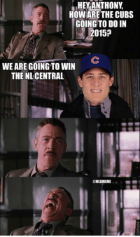 Anthony Rizzo said the #Cubs are going to win the NL Central in 2015...: HEY ANTHONY  HOW ARE THE CUBS  GOING TO DO IN  2015?  WE ARE GOING TO WIN  THE NL CENTRAL  MLBMEME Anthony Rizzo said the #Cubs are going to win the NL Central in 2015...