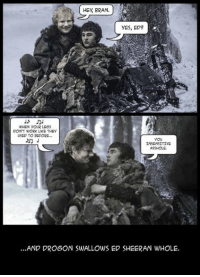😂 ~arya~: HEy, BRAN,  yES, ED? A  WHEN YOUR LEGS  DON'T WORK LIKE THEY  USED TO BEFORE...  you  INSENSITIVE  ASSHOLE.  ...AND DROGON SWALLOWS ED SHEERAN WHOLE. 😂 ~arya~