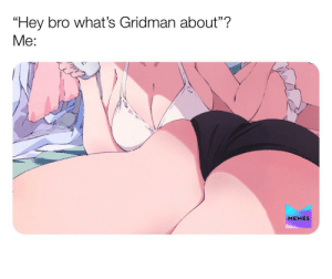 """Anime, Memes, and Show: """"Hey bro what's Gridman about""""?  Me:  MEMES What was that show about again....?"""