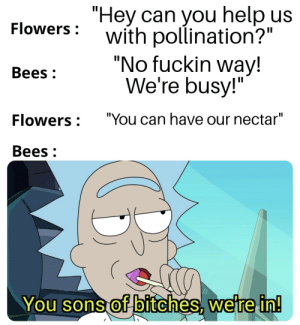 """Seems like a good deal: """"Hey can you help us  with pollination?""""  """"No fuckin way!  We're busy!""""  Flowers :  Bees :  """"You can have our nectar""""  Flowers :  Bees :  You sons of bitches, were in! Seems like a good deal"""