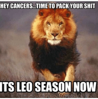 YASSSS!: HEY CANCERS.TIME TO PACKYOURSHIT  TS LEO SEASON NOW YASSSS!