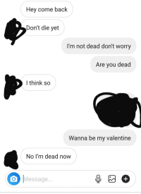 Im Dead Now: Hey come back  Don't die yet  I'm not dead don't worry  Are you dead  l think so  Wanna be my valentine  No I'm dead now  O Message