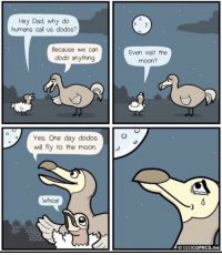 Dad, Moon, and Yes: Hey Dad, why do  humans call us dodos?  Because we can  dodo anything.  Even visit the  moon?  Yes. One day dodos  will fly to the moon.  Whoa  01111COMICs.me You can dodo anything!