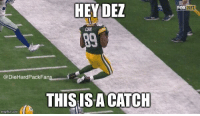 I couldn't resist.: HEY DEZ  COOK  Pack Fans  @DieHard THIS IS A CATCH  img flip-com  FOK NFL I couldn't resist.