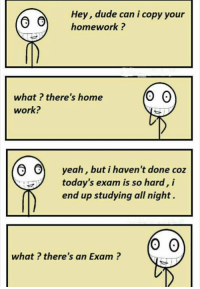 Dude, Memes, and Yeah: Hey, dude can i copy your  homework?  what ? there's home  work?  yeah, but i haven't done coz  today's exam is so hard, i  end up studying all night.  O O  yeah, but i haven't done coz  0  what? there's an Exam?