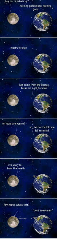 Doctor, Sorry, and Contagious: hey  earth,  whats  up?  nothing good moon, nothing  good  what's wrong?  just came from the doctor,  turns out i.got humans  olt man, are you ok?  no, the doctor told me  it's termina  i'm sorry to  hear that earth  ey earth, whats that?  dont know man <p>Humanity Is Contagious.</p>