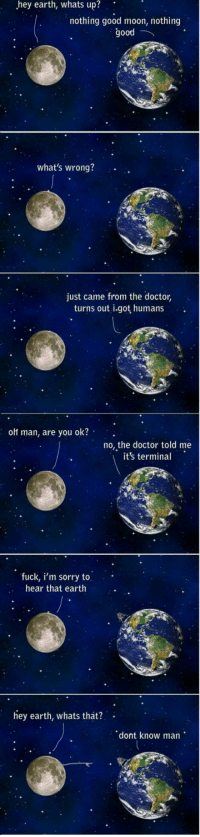 Doctor, Sorry, and The Worst: hey  earth,  whats  up?  nothing good moon, nothing  good  what's wrong?  just came from the doctor,  turns out i.got humans  ort man, are you ok?  no, the doctor told me  it's terminal  fuck, i'm sorry to  hear that earth  hey earth, whats that?  dont know man <p>The Worst Disease Of 'Em All.</p>
