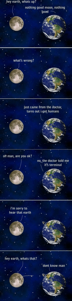 Doctor, Sorry, and Tumblr: hey  earth,  whats  up?  nothing good moon, nothing  good  what's wrong?  just came from the doctor,  turns out i.got humans  olt man, are you ok?  no, the doctor told me  it's termina  i'm sorry to  hear that earth  ey earth, whats that?  dont know man epicjohndoe:  Humanity Is Contagious