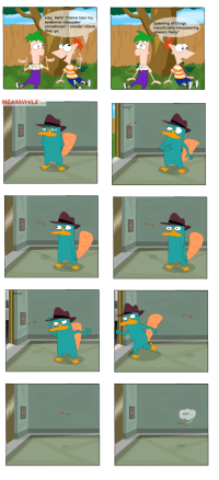 """Tumblr, Blog, and Wonder: Hey, Ferb? Yknow how my  eyebrows disappear  sometimes?I wonder where  hey go  Speaking of things  inexplica bly disappearing  where's Perry?  MEANWHILE  """"ding  sigh <p><a href=""""https://thenthereisthisstuff.tumblr.com/post/168058527656/this-agency-will-hire-anyone-i-swear"""" class=""""tumblr_blog"""">thenthereisthisstuff</a>:</p> <blockquote><p>This agency will hire anyone I swear</p></blockquote>"""