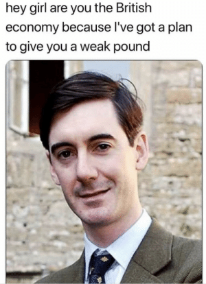 Meirl: hey girl are you the British  economy because l've got a plan  to give you a weak pound Meirl