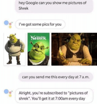 "Shrek: hey Google can you show me pictures of  Shrek  I've got some pics for you  SHReK  can you send me this every day at 7 a.m.  Alright, you're subscribed to ""pictures of  shrek"". You'll get it at 7:00am every day"