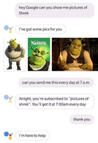 """You Send Me: hey Google can you show me pictures of  Shrek  I've got some pics for you  SHRek  can you send me this every day at 7 a.m.  Alright, you're subscribed to """"pictures of  shrek"""". You'll get it at 7:00am every day  thank you  I'm here to help"""