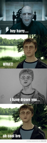 Harry Potter funny pictures!: hey harry...  WHAT!  i have drawn you..  oh cool bro  DOUBLE RAINBOWS ON 9GAG.COM Harry Potter funny pictures!