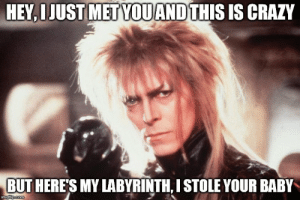 Crazy, David Bowie, and Memes: HEY,IJUST METYOUAND THIS IS CRAZY  BUT HERE'S MY LABYRINTH, I STOLE YOUR BABY  imgflip.com