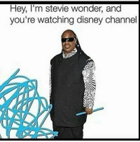 OM IM SCREAMING THIS IS SO FUNNY: Hey, I'm stevie wonder, and  you're watching disney channel OM IM SCREAMING THIS IS SO FUNNY