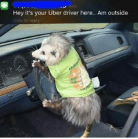 Memes, Uber, and Uber Driver: Hey it's your Uber driver here.. Am outside  e to reply @chardonnayandxanax your ride is here (follow @chardonnayandxanax 👈👈👈)