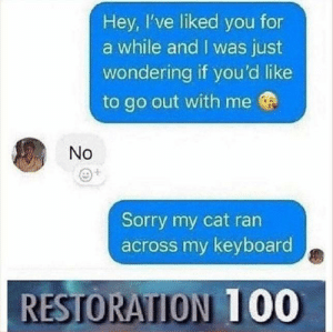 me😔irl: Hey, I've liked you for  a while and I was just  wondering if you'd like  to go out with me  No  Sorry my cat ran  across my keyboard  RESTORATION 1 00 me😔irl