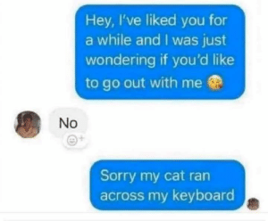 meirl: Hey, I've liked you for  a while and I was just  wondering if you'd like  to go out with me  No  Sorry my cat ran  across my keyboard meirl
