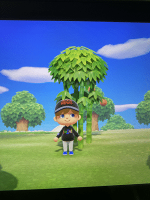 Hey just saw that Felix plays animal crossing and I thought he might like my lwiay jacket and pew news hat!: Hey just saw that Felix plays animal crossing and I thought he might like my lwiay jacket and pew news hat!
