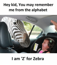 Memes, Alphabet, and 🤖: Hey kid, You may remember  me from the alphabet  I am 'Z' for Zebra SuperTroll