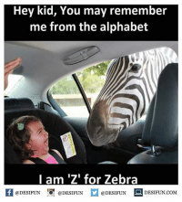"Be Like, Meme, and Memes: Hey kid, You may remember  me from the alphabet  I am ""Z for Zebra  @DESIFUN  DESIFUN.COM  @DESIFUN  @DESIFUN Twitter: BLB247 Snapchat : BELIKEBRO.COM belikebro sarcasm meme Follow @be.like.bro"