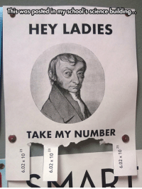 """Meme, Tumblr, and Http: HEY LADIES  TAKE MY NUMBER <p>Just Take My Number, Ladies.<br/><a href=""""http://daily-meme.tumblr.com""""><span style=""""color: #0000cd;""""><a href=""""http://daily-meme.tumblr.com/"""">http://daily-meme.tumblr.com/</a></span></a></p>"""