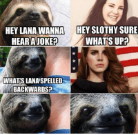 GUISE LISTEN TO ME. I'm not usually a fan of these rapey/sexy sloth memes, but it is sloth week, so I am making an exception. PS: SEND IN SOME SLOTHY GOODNESS: HEY LANA WANNA HEY SLOTHY SURE  HEAR A JOKE  WHATS UP  WHATS LANASPELLED  BACKWARDS GUISE LISTEN TO ME. I'm not usually a fan of these rapey/sexy sloth memes, but it is sloth week, so I am making an exception. PS: SEND IN SOME SLOTHY GOODNESS