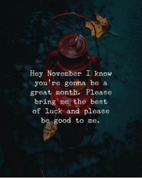 Best Of Luck: Hey November I know  you're gonna be a  great month. Please  bring me the best  of luck and please  be good to me.