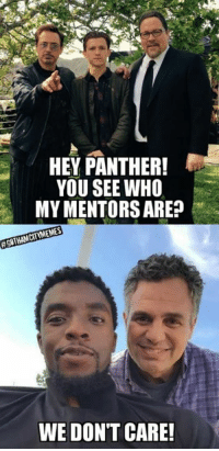 Search Panther Memes On Meme