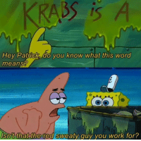 Memes, Mr. Krabs, and Work: Hey Patrick, do you know what this word  means?  ON  Isn't that the red sweaty guy you work for?  0 Petition to change mr krabs name to red sweaty guy