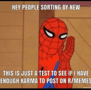 Memes, Reddit, and Taken: HEY PEOPLE SORTING BY NEW  THIS IS JUST A TEST TO SEE IF I HAVE  ENOUGH KARMA TO POST ON R/MEMES  mema My last attempt got taken down after a minute or so. Hope that this finally works