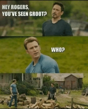 Dank, Memes, and Target: HEY ROGERS,  YOU'VE SEEN GROOT?  WHO? No need for the snap by JackNVodka MORE MEMES