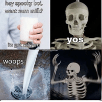 Spooky, Milk, and Bol: hey spooky bol,  want sum milk?  yOS  its  WOopS