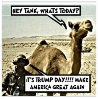 💀 TRUMP DAY 👊💀👍 UncleSamsMisguidedChildren 💀 Check out our store. Link in bio. 💀 LIKE our Facebook page 💀 Subscribe to our YouTube Channel 💀 Visit our website for more News and Information. 💀 www.UncleSamsMisguidedChildren.com 💀 Tag and Join our Misguided Family @unclesamsmisguidedchildren USE CODE USMCNATION10 for 10% off our Store. MisguidedLife MisguidedNation USMCNation Apparel ProGun 2A MolonLabe Tactical USMC Valhalla bikerlife Deplorable zulufucks 0311 biden Gun Trump SemperFi Grunt Veteran USMC Patriot oathkeeper DonaldTrump threepercenter militia: HEY TANK, WHATS TODAY?  T'S TRUMP DAY!!!! MAKE  AMERICA GREAT AGAIN 💀 TRUMP DAY 👊💀👍 UncleSamsMisguidedChildren 💀 Check out our store. Link in bio. 💀 LIKE our Facebook page 💀 Subscribe to our YouTube Channel 💀 Visit our website for more News and Information. 💀 www.UncleSamsMisguidedChildren.com 💀 Tag and Join our Misguided Family @unclesamsmisguidedchildren USE CODE USMCNATION10 for 10% off our Store. MisguidedLife MisguidedNation USMCNation Apparel ProGun 2A MolonLabe Tactical USMC Valhalla bikerlife Deplorable zulufucks 0311 biden Gun Trump SemperFi Grunt Veteran USMC Patriot oathkeeper DonaldTrump threepercenter militia