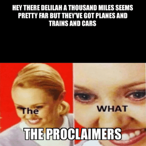 i would walk 500 miles: HEY THERE DELILAH A THOUSAND MILES SEEMS  PRETTY FAR BUT THEY'VE GOT PLANES AND  TRAINS AND CARS  WHAT  The  THE PROCLAIMERS i would walk 500 miles