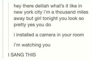 I can only sing this version from now on: hey there delilah what's it like in  new york city i'm a thousand miles  away but girl tonight you look so  pretty yes you do  i installed a camera in your room  i'm watching you  I SANG THIS I can only sing this version from now on